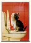Pripratinti kačiuką tuštintis dėžutėje